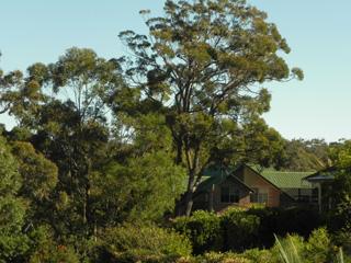 accommodation at Longbeach Clifftop Retreat